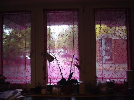 kuechenfenster-1