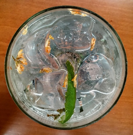 1A Gin and Tonic mit Portugiesischem Gin